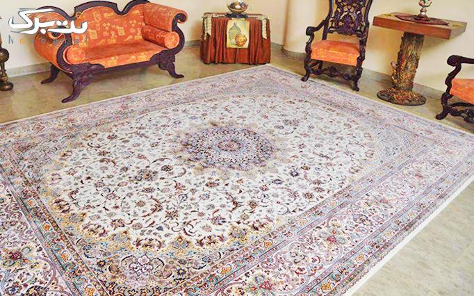 فروش ویژه شب یلدا: فرش های 1200 شانه از فرش قیطران(آوای پایتخت)
