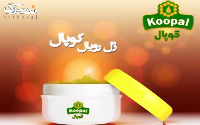 عسل ژل رویال از فروشگاه عسل کوپال