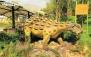 انحصاری نت برگ: ژوراسیک پارک