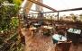 کافه رستوران سایروس با منو پاستا