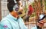 بازدید تخصصی با آوایار در باغ پرندگان