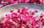 تور یک روزه جشنواره گل و گلاب
