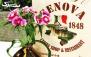 نوشیدنی های سرد و گرم در کافه فست فود جنوا