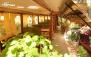 صبحانه های خوشمزه و متنوع در باغچه رستوران صفا