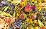 تهیه دمنوش های گیاهی در آموزشگاه گیاه دانه