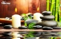 ماساژ رفع دردهای عضلانی درمرکز ماساژ هانیه (ویژه بانوان)