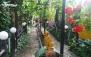 کافه سنتی شبستان با منو باز محبوب ترین غذاهای ایرانی
