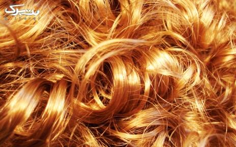 کرلی موی تا سرشانه در سالن زیبایی سما