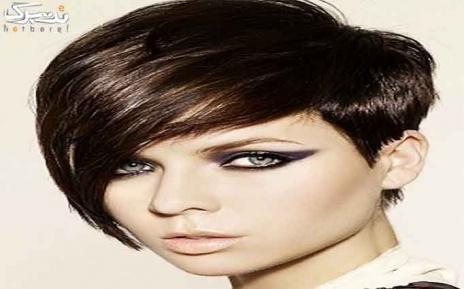 پکیج 1 : کوپ مو در سالن زیبایی ژابیز