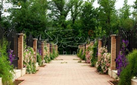 بازدید از باغ گیاه شناسی و استفاده از منوی باز کافی شاپ