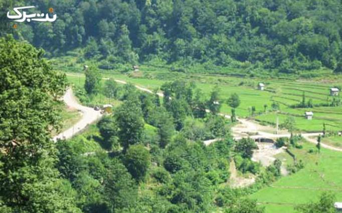 خاطره ای از سین پنجم در جنگل زیبای لاجیم با ژیوار