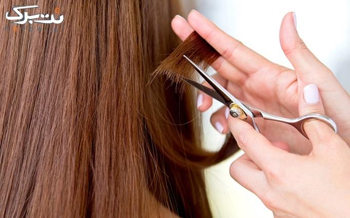 کوتاهی مو در آرایشگاه نیلی گل