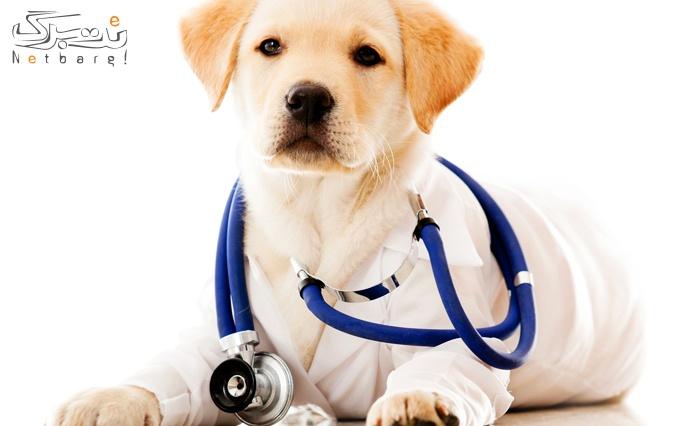 خدمات پزشکی حیوانات در دامپزشکی نوربا