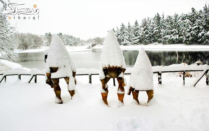 جشنواره زمستانه در باغ گیاه شناسی