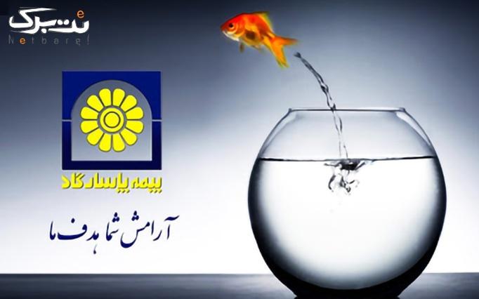 بیمه عمر و آتیه از بیمه پاسارگاد نمایندگی امامی