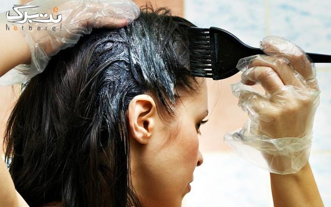 رنگ مو در آرایشگاه آژینه