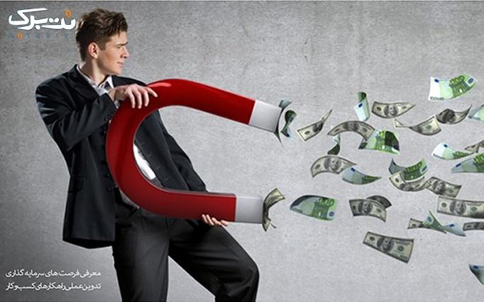 کارگاه کاربردی جذب ثروت با سرمایه کم