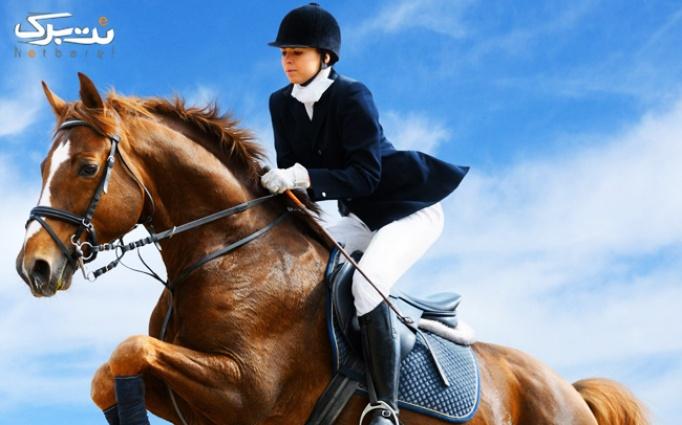 سوارکاری در محیط زیبای در صنعت اسب رویال