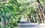 تفریح و شاتل سواری در مجتمع ساحلسر