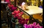 به سبک کاخ های ایتالیا در رستوران میلاد