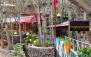 رستوران غزال فشم با سرویس چای سنتی