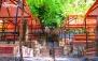 مجموعه گردشگری باغ ایرانی با پکیج ویژه ناهار