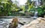 نجات گونه های کمیاب گیاهی باغ ملی گیاه شناسی