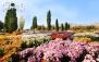 ویزای بهشت با هزار فنجان هوای تازه پاییزی