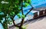 لذت آفتاب تابستانی در استخر روباز ارم