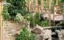 ورودی باغ پرندگان + بن خرید از منوی فست فود سلین