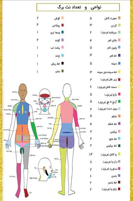 جدول نواحی لیزر shr  ساختمان پزشکان سونیا